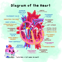 Excerpts from Hank the Heart, a children's book published by Blue Manatee